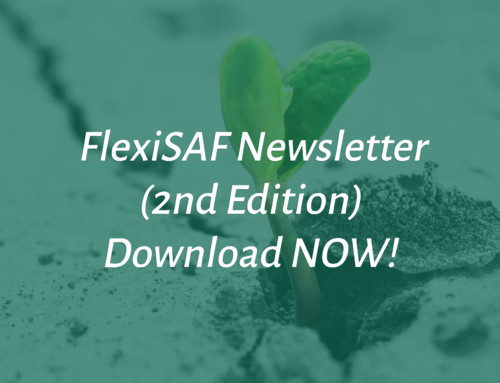FlexiSAF Newsletter (2nd Edition)