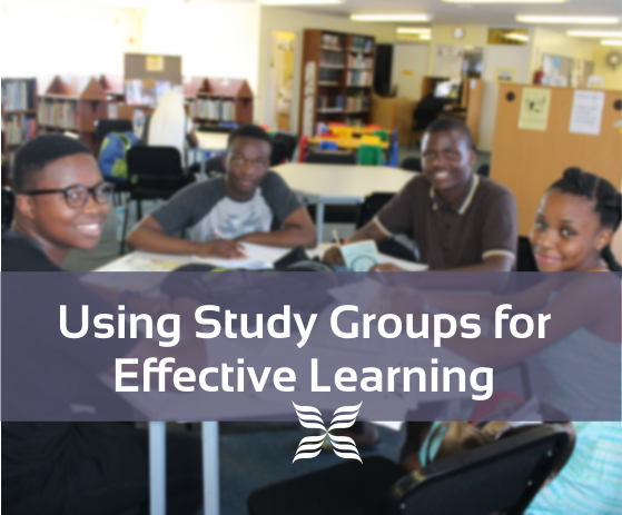 Using Study Groups for Effective Learning