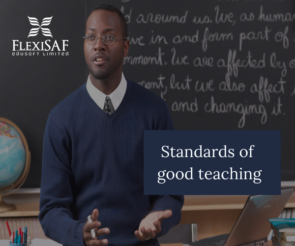 Standards for Good Teaching: 10 Key Principles to Follow