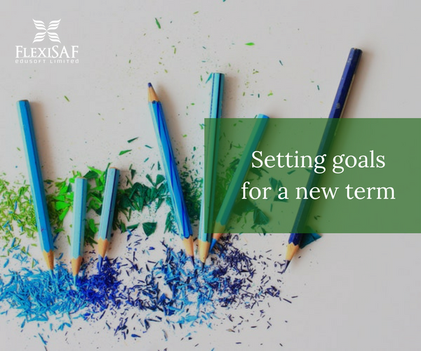 6 Goals For A New Term That Teachers Set | SAFSMS Blog